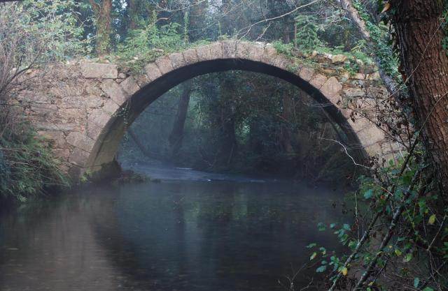 Ponte de Pielas, no camiño francés das ánimas. Doso