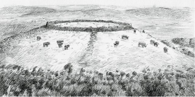 Cercado Neolítico de A Lagoa Carlos Alfonzo