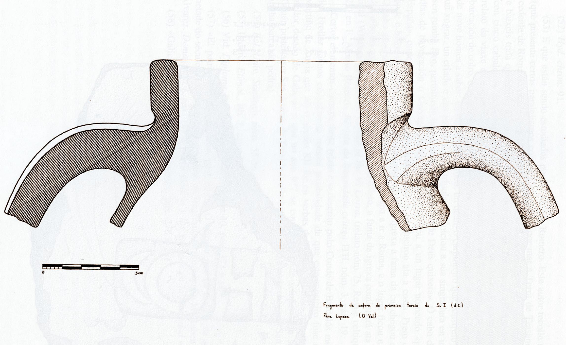 anforalopesa